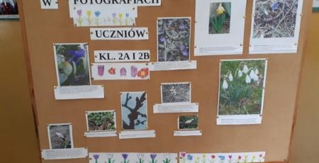 Wystawa przyrodnicza